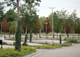 Bepflanzung und Pflege Parkplatz und Außenanlage